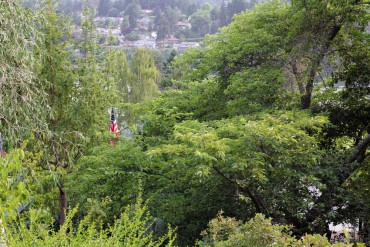 High on the hillside, you can peer through a canopy of trees to the flag that presides over the 9/11 garden.