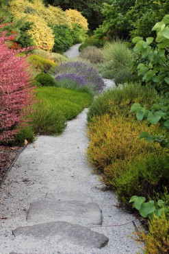Layers of plant textures and shapes line a path in the Stroll Gallery.