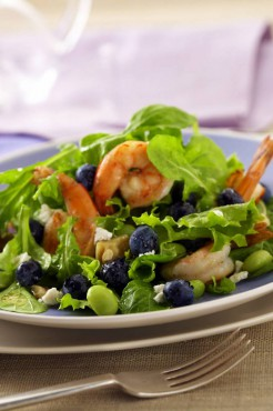 Blueberry-Shrimp Salad with Lemon Vinaigrette
