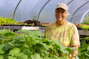 Nikki Johanson of Pheasant Fields Farm in her greenhouse full of veggie starts