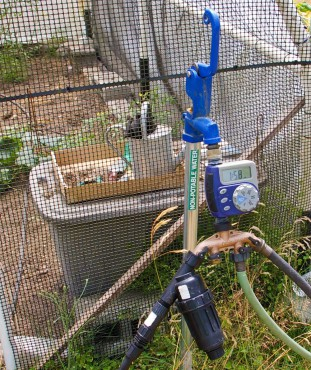 Irrigation hook-up at KCD that waters hoophouse and veggies.