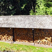 Woodpile at the Fortners