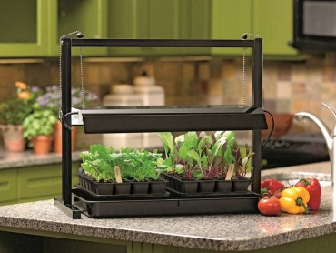 Energy-efficient and long-lasting, high-intensity grow lights will provide the greatest yields when growing tomatoes and other fruiting plants indoors. (Photo courtesy Gardener's Supply Company)