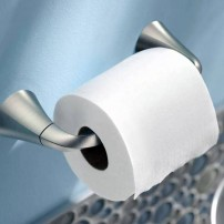Oxby toilet tissue holder in brushed nickel by Moen