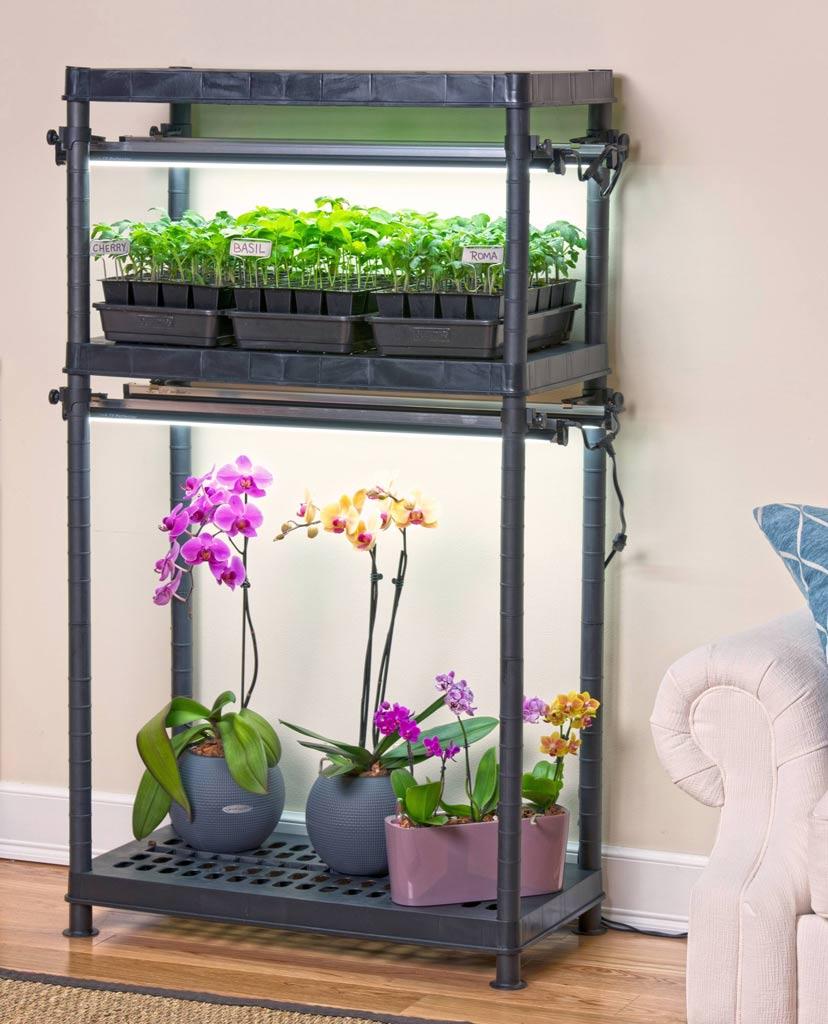WSHG.NET BLOG | Homegrown Flavor from an Indoor Garden ...