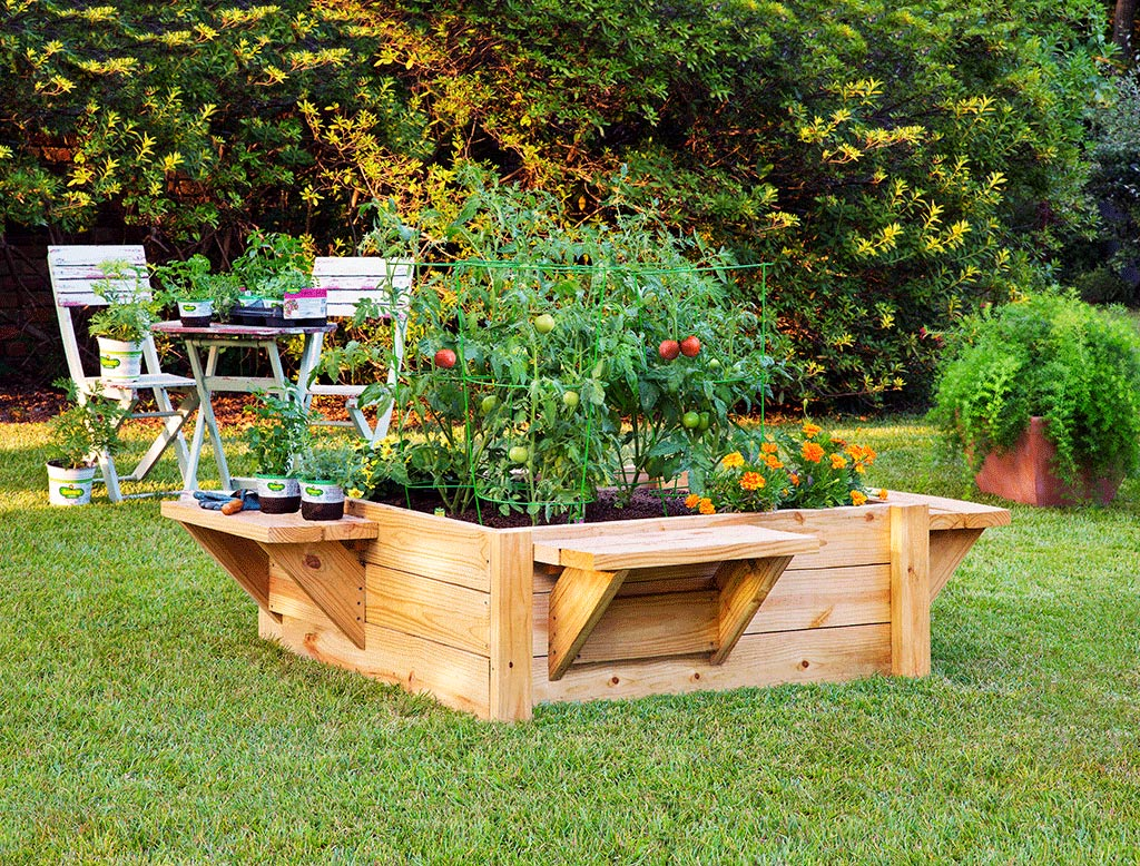 WSHGNET BLOG Ease into Gardening with a Raised Bed Featured