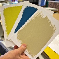 Sample paint swatches