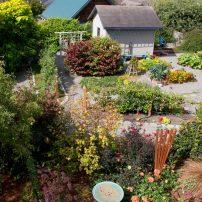 Gretchen Lee's Garden of Graces
