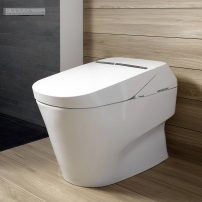 The TOTO Neorest 750H