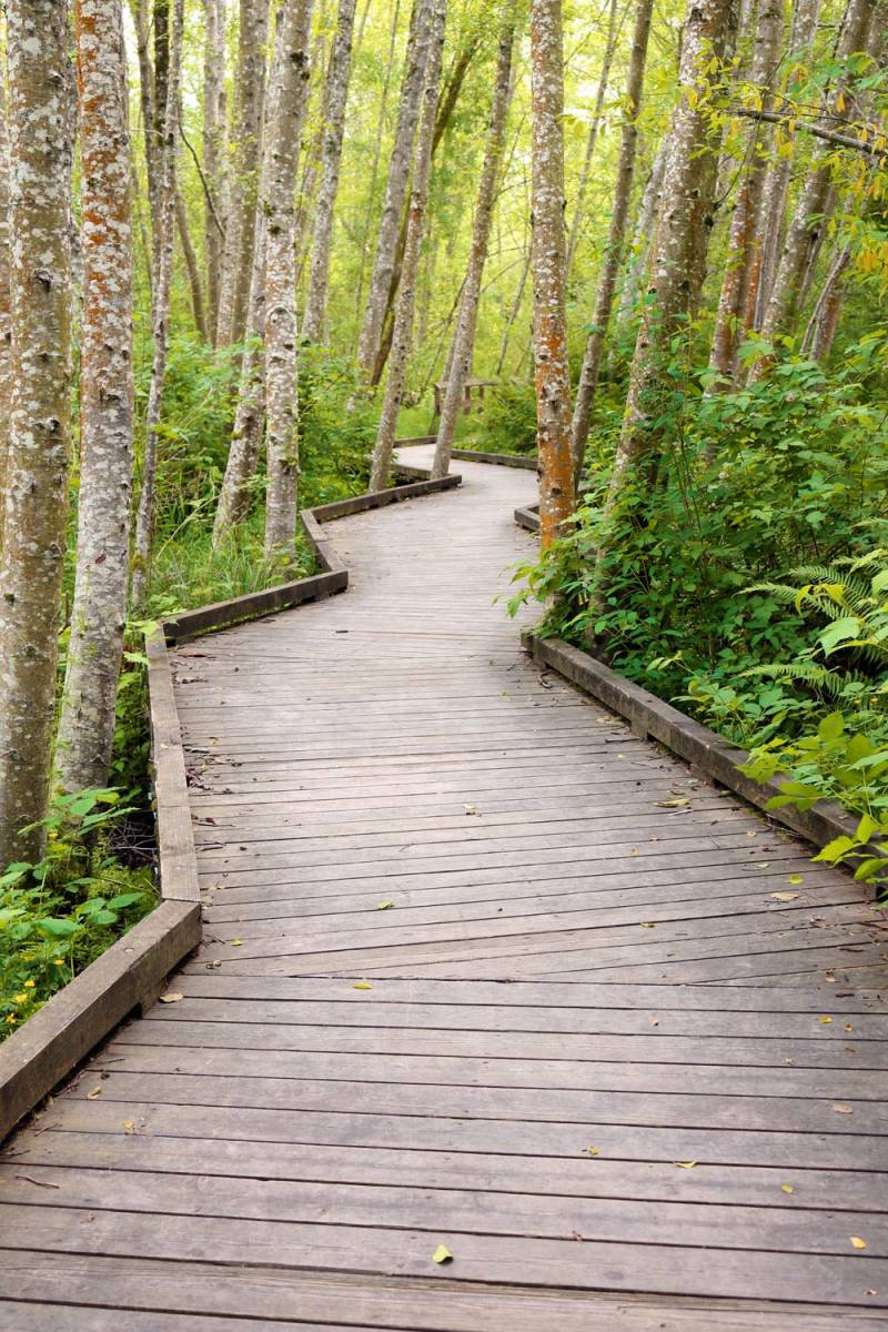Wshg Net Clear Creek Trail System An Oasis In The