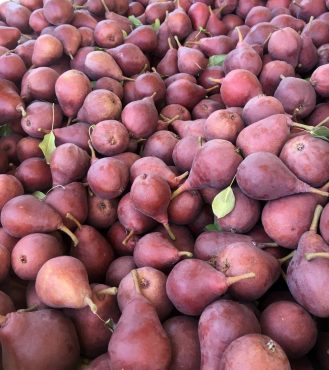 Star Crimson Pears — Just picked!