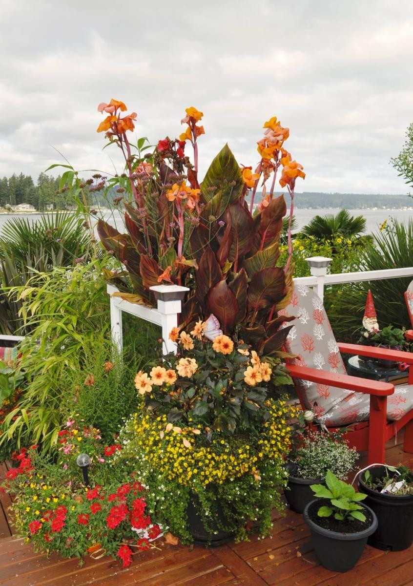 WSHG.NET | A Garden that Defies Limits | Featured, The Garden ...