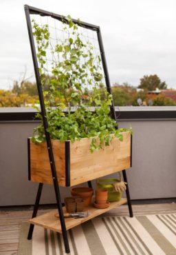 Apex Planter with Trellis and Shelf (Photo by gardeners.com)