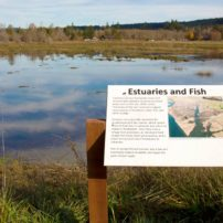 Belfair Community Trail System