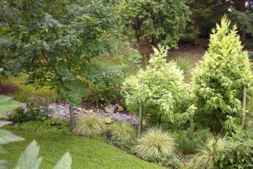 Garden Capers