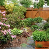 Using correct soil mixes and mulches is critical to a thriving, functional rain garden. (Photo by Zsofia Pasztor)