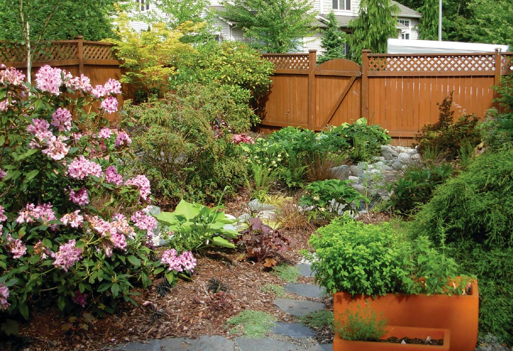 WSHG.NET BLOG | Why Does the Northwest Need Rain Gardens? | Featured ...
