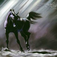 """Shadow Dancer"" by Kim McElroy. ""In my pastel painting, a client once observed that the horse seemed about to take the next step,"" the artist says. ""Therefore, he was never really still, but in a perpetual state of potential movement. The image is condensed down to the essential elements of what our eyes would focus on if we saw a beautiful black horse dancing in the sand. We wouldn't see the trees, the barn, the fence or the sky — we would only see the horse; we would only feel the magic."""