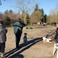 Kitsap Dog Parks