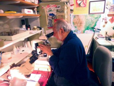 Olaf Ribeiro spends many long hours in front of a microscope.