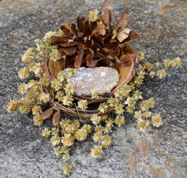 Golden hops vine (Humulus lupilus 'Aureus') was wound into a wreath then hung to dry. The now-brittle wreath cradles a hand-turned wood bowl filled with bigleaf maple seeds (Acer macrophyllum) and a chunk of colorful stone.