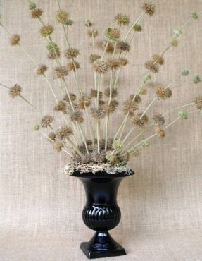 A footed, glass vase filled with horehound (Marrubium vulgare) stems has a whimsical form. The stems remain in place thanks to florist foam hidden with lacey lichen.