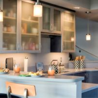Satin-etched glass cabinet doors by Element Design (Kitchen design by A Kitchen That Works, LLC)