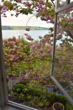 The view from an upstairs bedroom