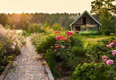 Garden Memories