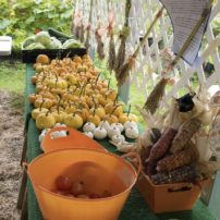 Farm Tour and Fiber Arts Fest