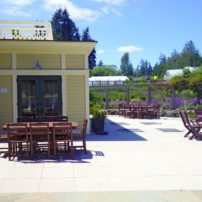 Outdoor dining at Heyday Farm