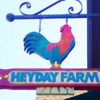 Heyday Farm
