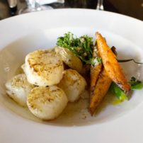 Capasanate Sea scallops