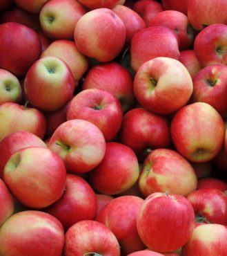 What do you do with a bountiful apple harvest? Make some great-tasting liqueurs from them.