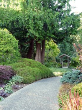 Enchanting, Colorful Garden comes from Creative Evolution