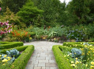 The hardscape and tightly clipped boxwood edging make a big impact at the Heronswood garden in Kingston, regardless of the season.