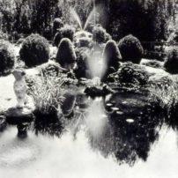 Bainbridge Gardens Sunken gardens