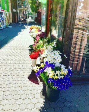 Flower seller in Sofia