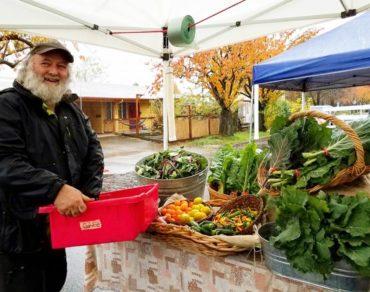 Organic farmer at market