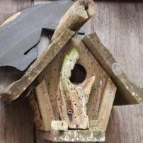 Birds are not the cleanest creatures, as you can see from this rustic-style birdhouse that fledged a few.