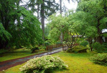 Main entrance to the Japanese Garden