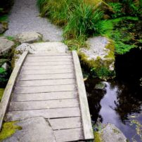 Bridge at the pond outflow