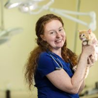 Dr. Jen Stonequist, director of medicine, with a recently arrived kitten