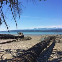 Twenty acres of marine shoreline and six acres of tidelands protected on Hood Canal north of Vinland. (Photo courtesy Jonathan Decker)