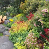 The Garden of Peggy and Bill Fox