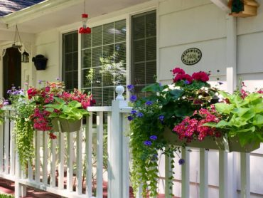 Flower boxes on the Dreyers' front porch