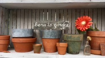 """Born to Garden"" sign in Karen Beck's greenhouse"