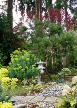 A place of quiet reflection in the Lightfeldts' garden