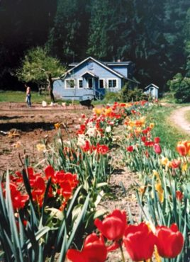 The original home and garden (Photo courtesy Marj Masla)