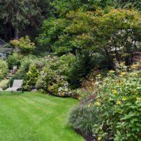 Abundance in the garden
